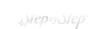 Dance Now Step by Step Logo